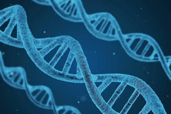遺伝子検査キットのアフィリエイトで稼ぐ方法